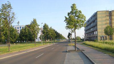 Ortsbesichtigung | Schallschutz- und Luftschadstoffgutachten für das Medizinisch-Wissenschaftliche Zentrum in Leipzig-Probstheida